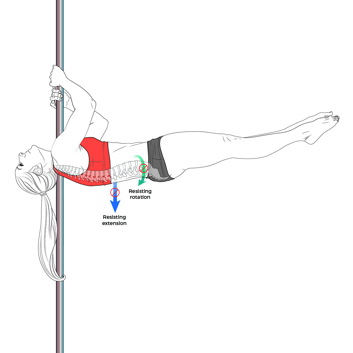 Shoulder mount flag anatomy
