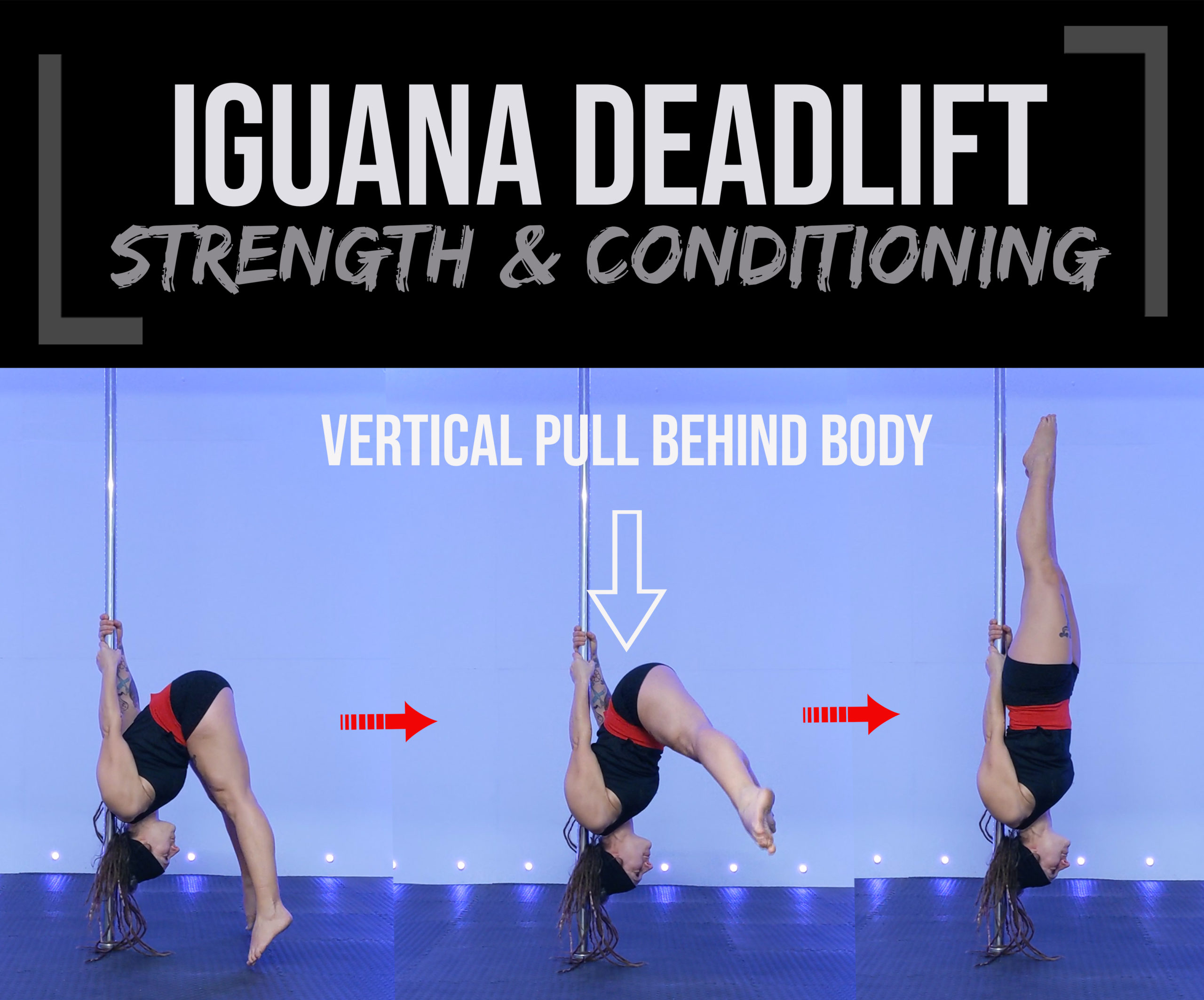 Iguana strength and conditioning