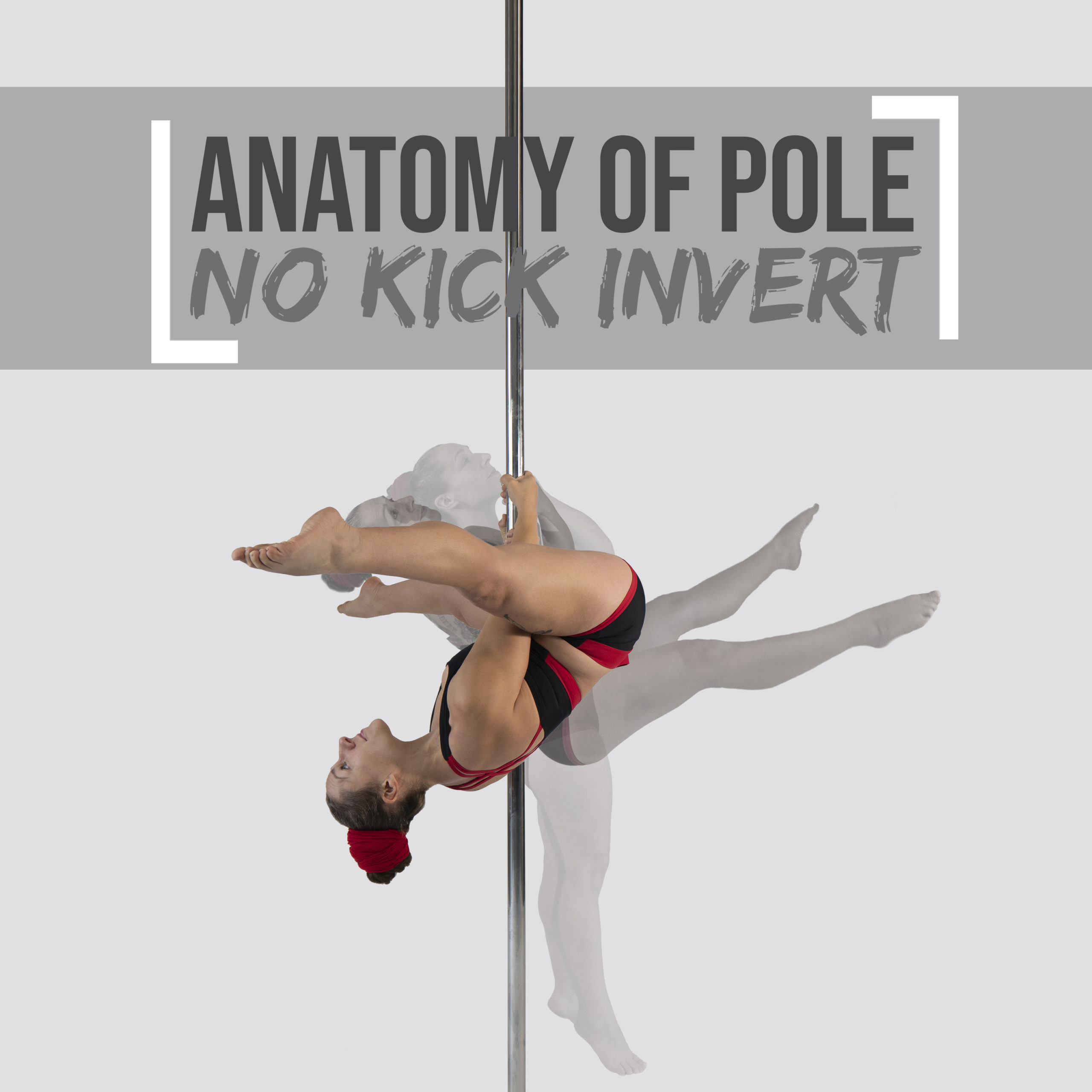 Anatomy of the Pole Invert