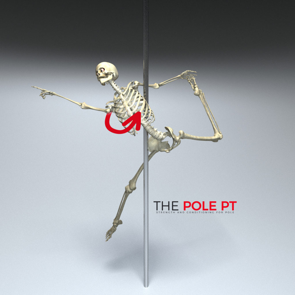 Thoracic rotation in pole dance