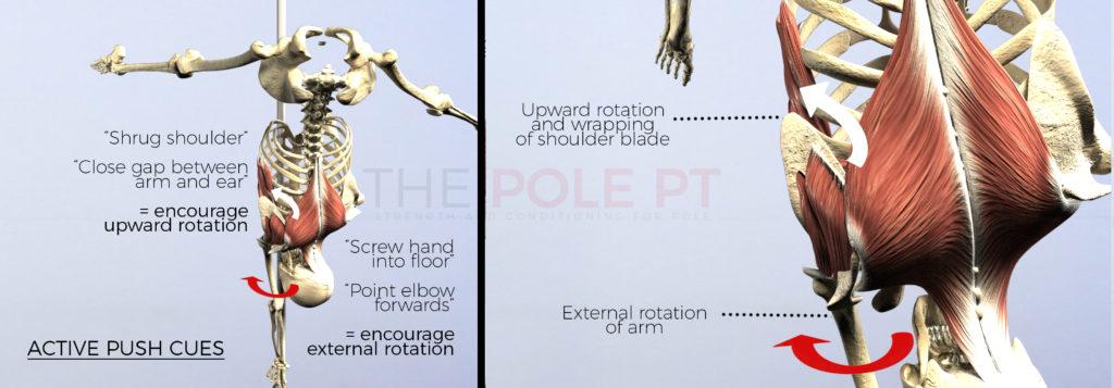 Overhead shoulder engagement in pole