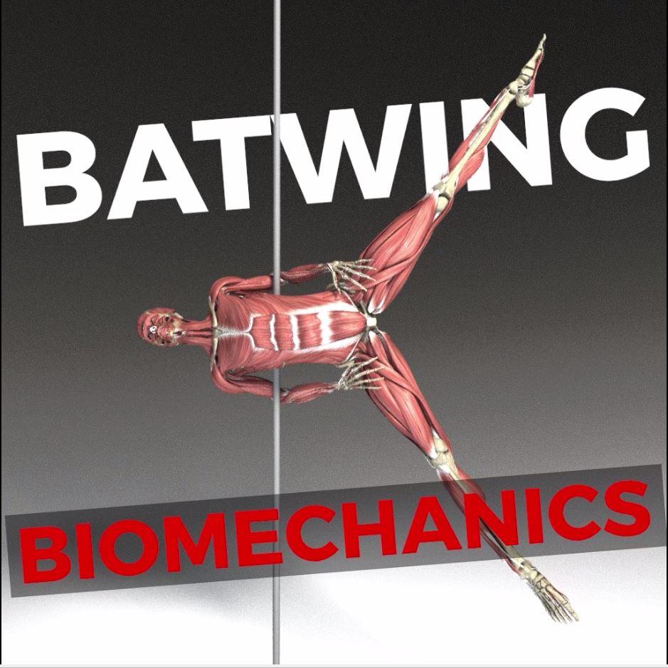 Batwing Biomechanics! + 5 conditioning exercises