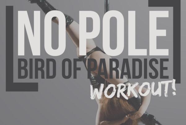 Bird of paradise off the pole