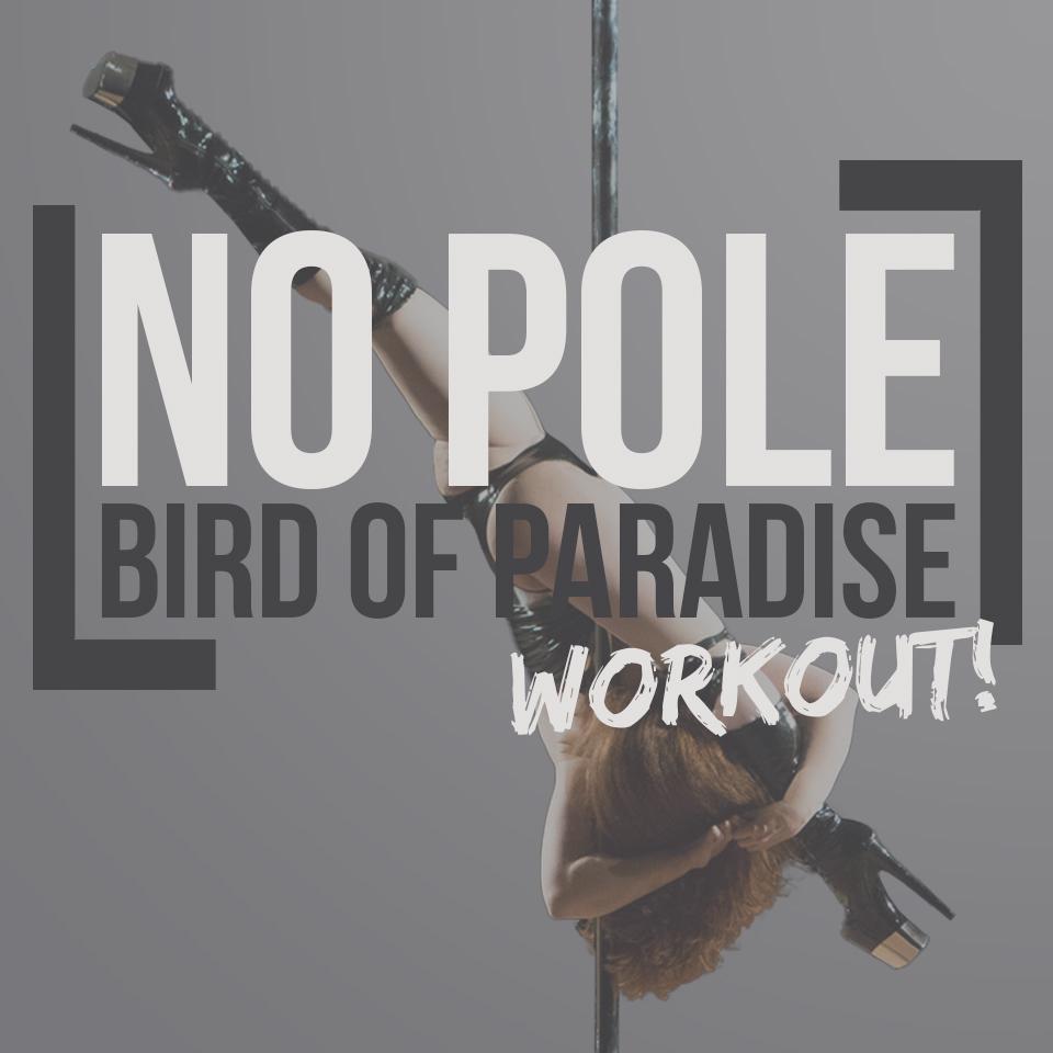 No Pole Bird of Paradise workout