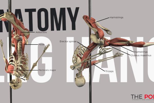 Biomechanics of the leg hang